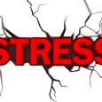 Anything taken too much is bad for the health. A little stress is actually good, as it could serve to help you function at your best. However, stress that seems...